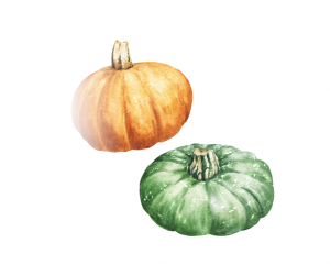 Pumpkin #pickyeater #foodforpickyeaters # pickyeating #fussyeating #foodforfussyeaters #judithyeabsley #fussyeater #theconfidenteater #eatingveggies #eatmoreveggies #eatvegetables #eatingvegetables #eatingmorevegetables #wellington #NZ