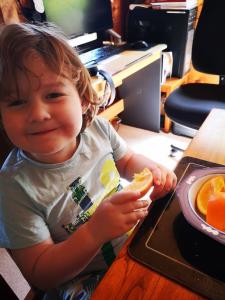 Boy happily eating an orange #pickyeater #foodforpickyeaters # pickyeating #fussyeating #foodforfussyeaters #judithyeabsley #fussyeater #theconfidenteater #eatfruit #eatingfruit #addingfruit #eatmorefruit #eatingmorefruit #wellington #NZ