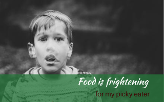 Food is frightening for my picky eater #foodfears #Food for picky eaters #theconfidenteater #wellington #NZ #judithyeabsley #fussyeater #fussyeating #pickyeater #picky eating #supportforpickyeaters #theconfidenteater #creatingconfidenteaters #newfoods #bookforpickyeaters