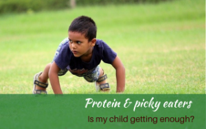 Protein and picky eaters. Getting the nutrients they need. #proteinforpickyeaters #helpforpickyeaters #helpforpickyeating #Foodforpickyeaters #theconfidenteater #wellington #NZ #judithyeabsley #helpforfussyeating #helpforfussyeaters #fussyeater #fussyeating #pickyeater #picky eating #supportforpickyeaters #theconfidenteater #creatingconfidenteaters #newfoods #bookforpickyeaters