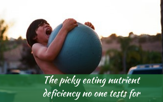 THE picky eating nutrient deficiency no one tests for zinc #pickyeatingnutrientdeficiency, #pickyeatingzincdeficiency, #Recipesforpickyeaters, #helpforpickyeaters, #helpforpickyeating, #Foodforpickyeaters, #theconfidenteater, #wellington, #NZ, #judithyeabsley, #helpforfussyeating, #helpforfussyeaters, #fussyeater, #fussyeating, #pickyeater, #pickyeating, #supportforpickyeaters, #winnerwinnerIeatdinner, #creatingconfidenteaters, #newfoods, #bookforpickyeaters, #thecompleteconfidenceprogram, #thepickypack, #funfoodsforpickyeaters, #funfoodsdforfussyeaters